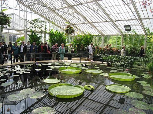 Лондон, Королевские ботанические сады